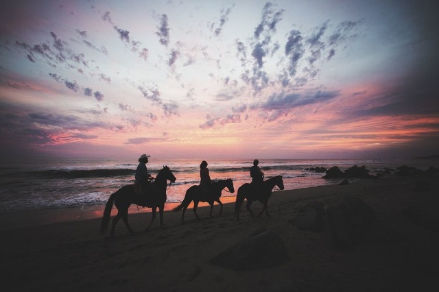 beach-horse-tour-a-pink-sky-a-sunset-a-ixtapa-background-a-present-moment-retreat-a-boutique-hotel-a-spa-resort-a-yoga-retreat-a-restaurant-a-playa-troncones-a-guerrero-mexico-a-chri1